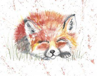 Sleeping Fox Print (10×8)